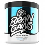 Brain Gains Nootropic Brain Fuel 260g