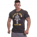 Golds Gym Muscle Joe T Shirt - Charcoal Marl