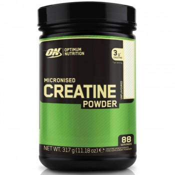 Optimum Nutrition Creatine Powder 317g *20% OFF*